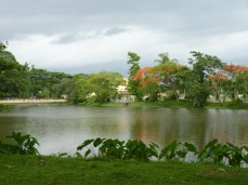 The blissful pond - 2