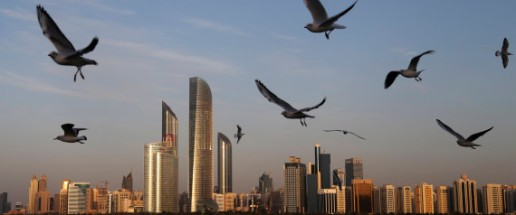 Seagulls fly over the city skyline in Abu Dhabi, United Arab Emirates, Wednesday Jan. 14, 2015. Seagulls are the migrating wild birds that come to the UAE shores every winter from Siberia and Mediterranean regions. (AP Photo/Kamran Jebreili)